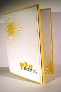 Gather Sunshine